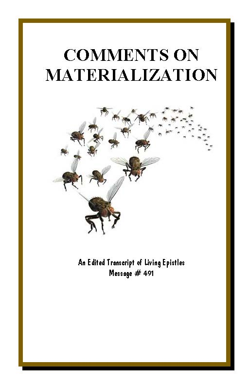 CommentsOnMaterialization.LEM.491.051116.Cover