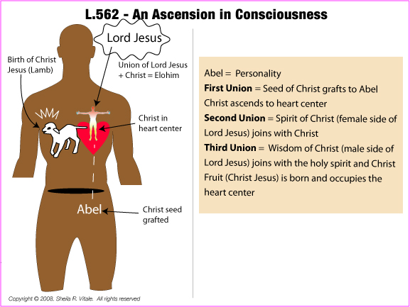 L.562.M.AN ASCENSION IN CONSCIOUSNESS